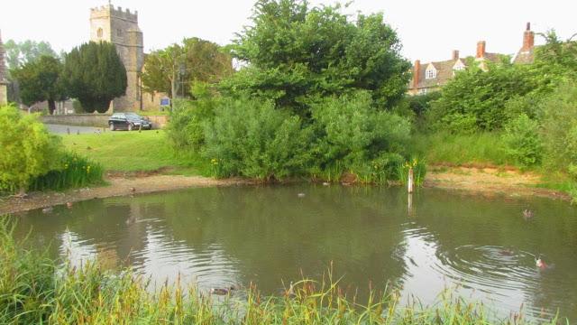 1437765052-Ducklington_Duck_Pond.jpg