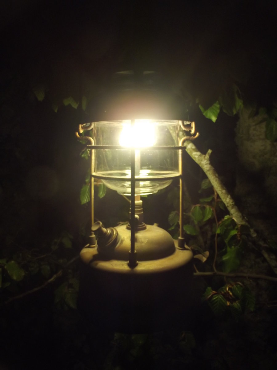 porkiefirst light 005.jpg